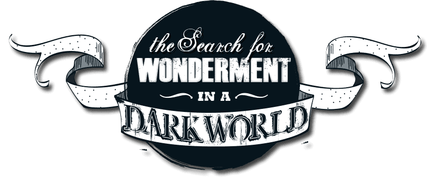 The Search for Wonderment in a Dark World