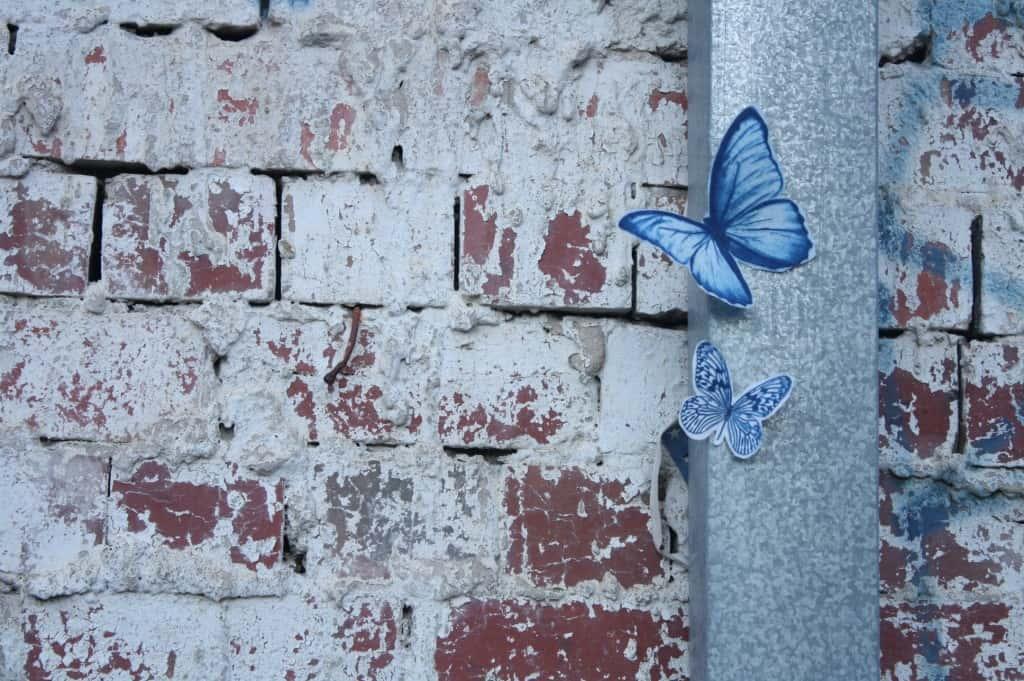 Genevre Becker 03 Swarm Aug 2015